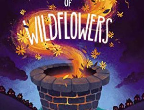The Wonder of Wildflowers by Anna Staniszewski